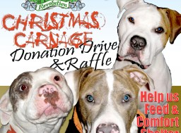 Christmas Carnage Donation Drive for Philly A.C.C.T. Shelter